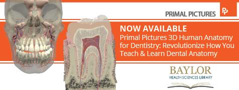 anatomy.tv 3D dentistry